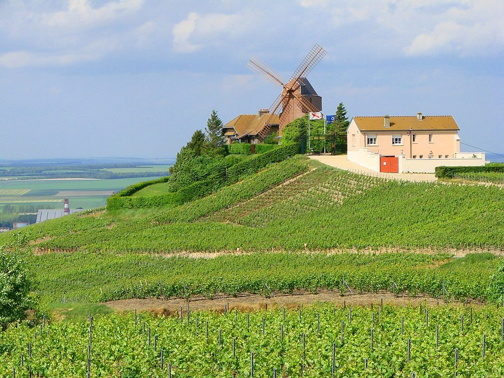 champagne france Verzenay_moulin