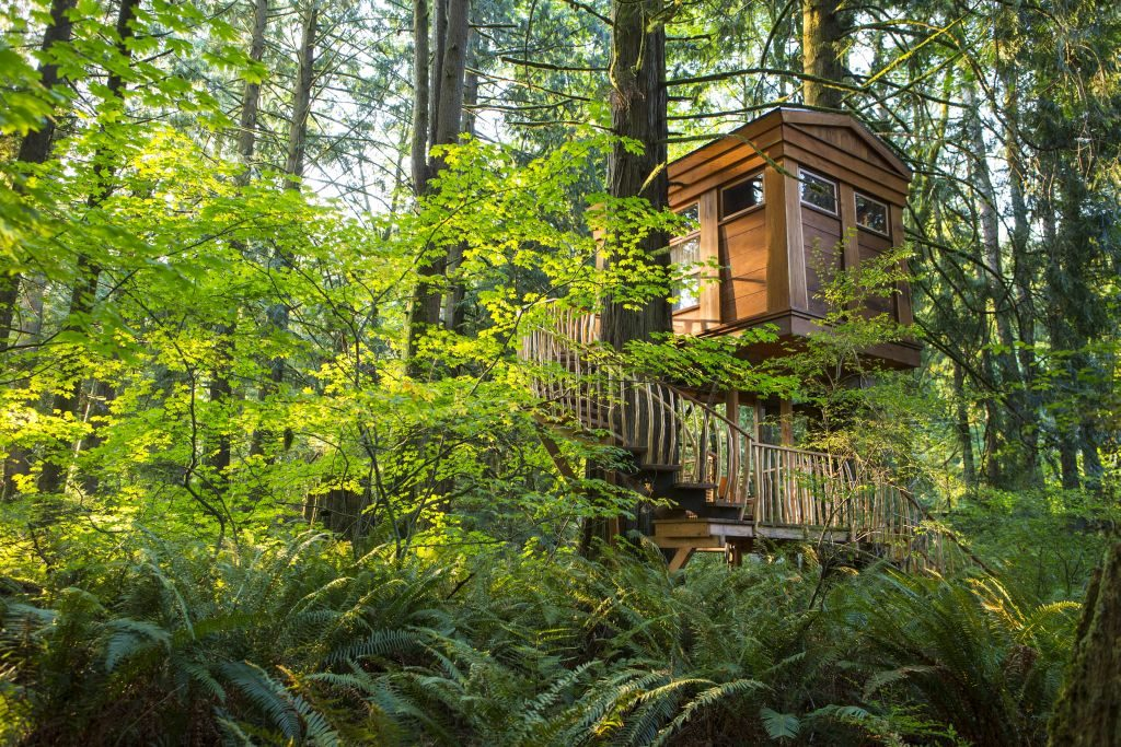 Bonbibi Exterior treehouse point