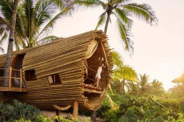 Treehouse in Playa Viva, Mexican hotel