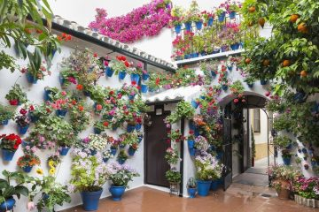 Córdoba calleja de las flores Spain travel
