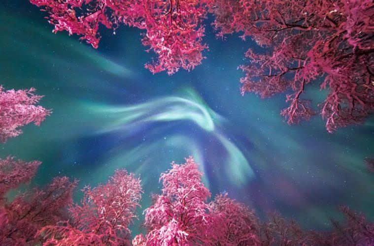 Auroral Crown © Yulia Zhulikova travel photography
