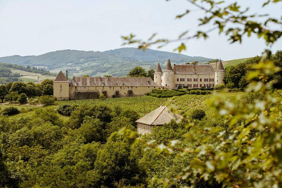 Beaujolais Burgundy