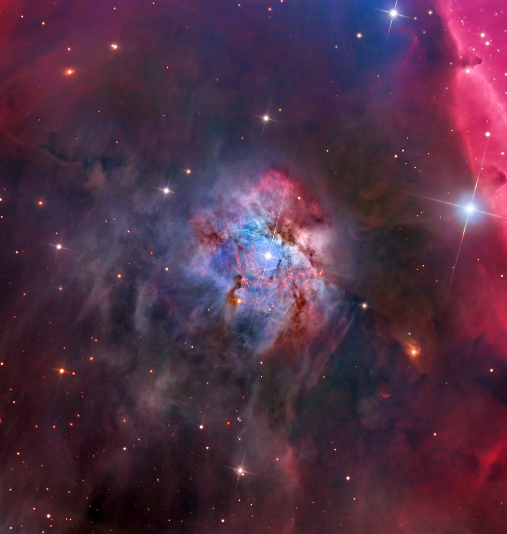 NGC 2023 © Warren Kelle