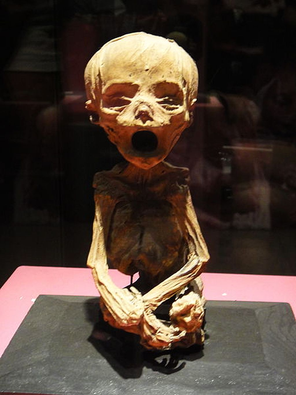 Mummy Museum in Mexico