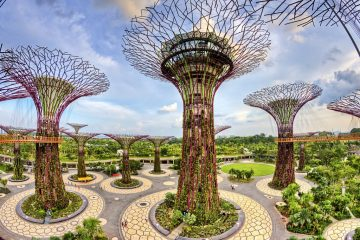 Supertree Grove, Singapore travel
