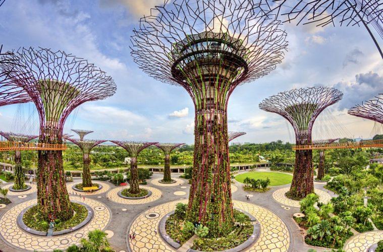 Supertree Grove, Singapore travel
