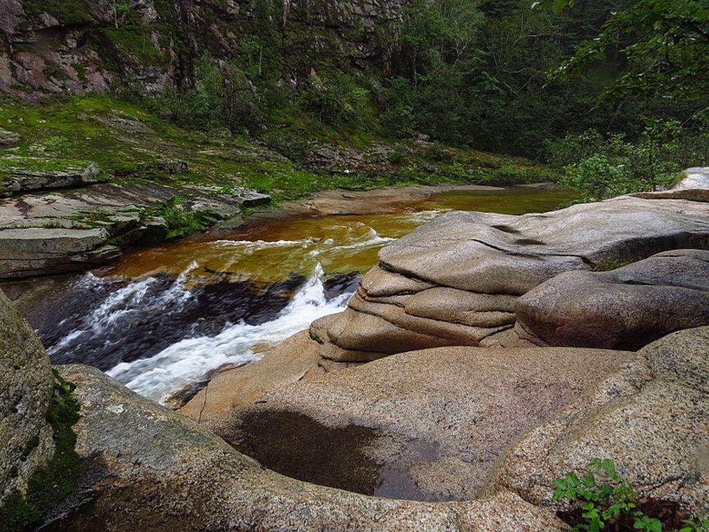 Zov Tigra National Park in Russia