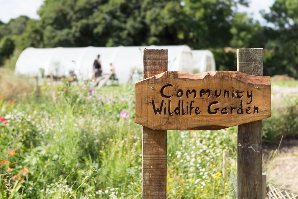 green farm kent community wildlife garden