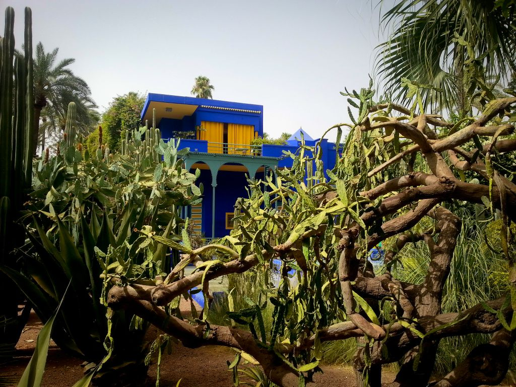 11 most gorgeous gardens around the world for Jardin majorelle