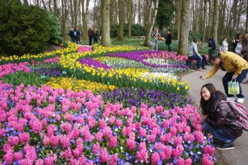Keukenhof Gardens, Netherlands best gardens in europe