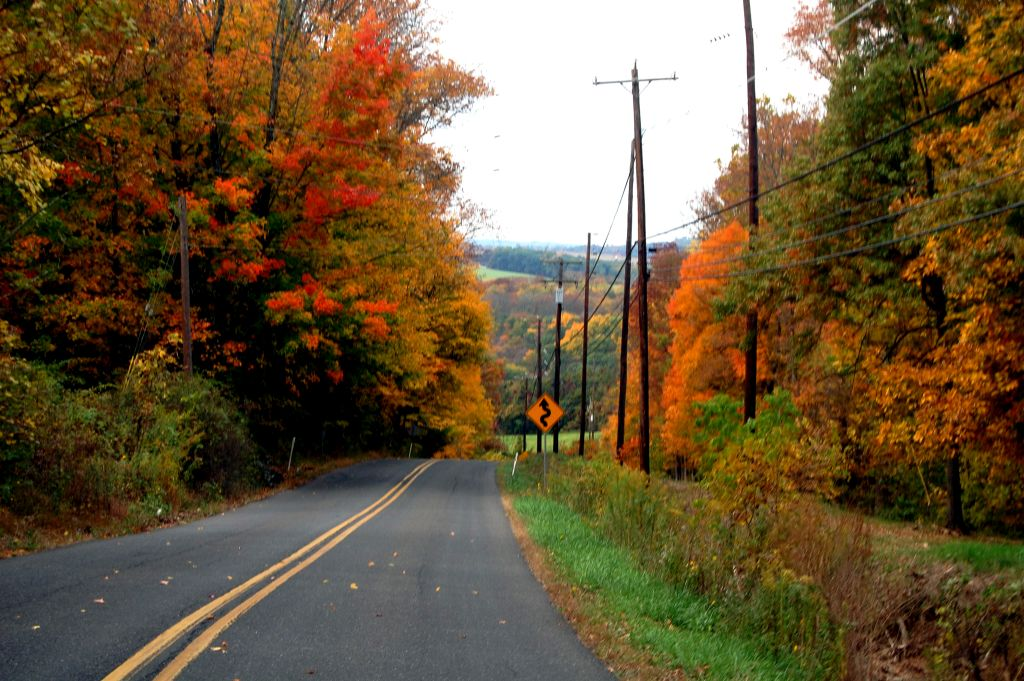 Upper Delaware Scenic Byway, New York