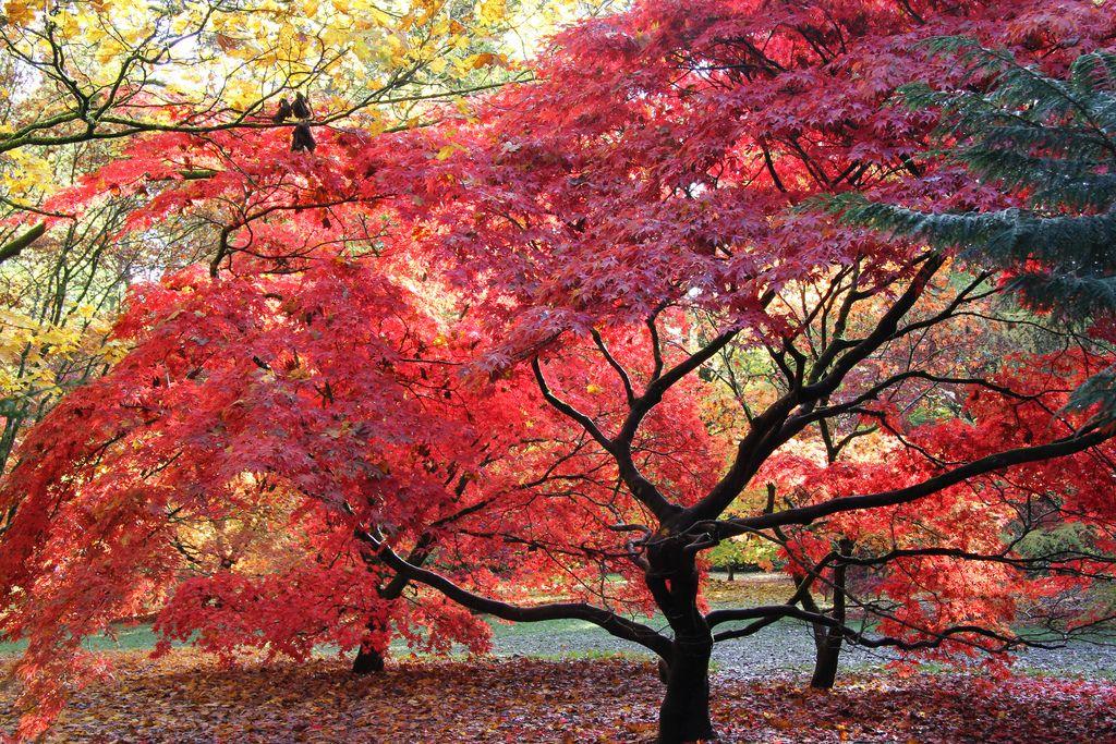 Gloucestershire, England