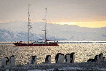 antarctica sea gypsies