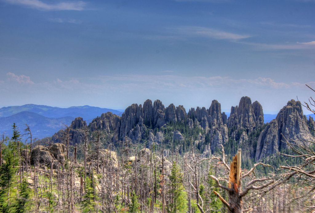 Free photo: Custer State Park, Custer, Mountain - Free