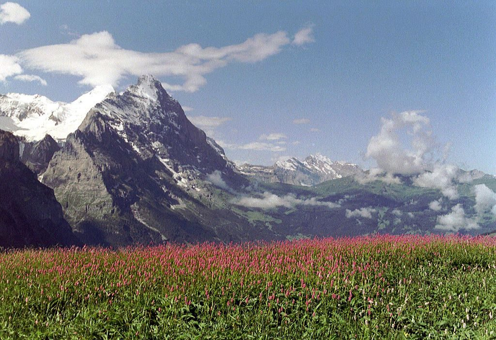 Grosse Scheidegg, Switzerland