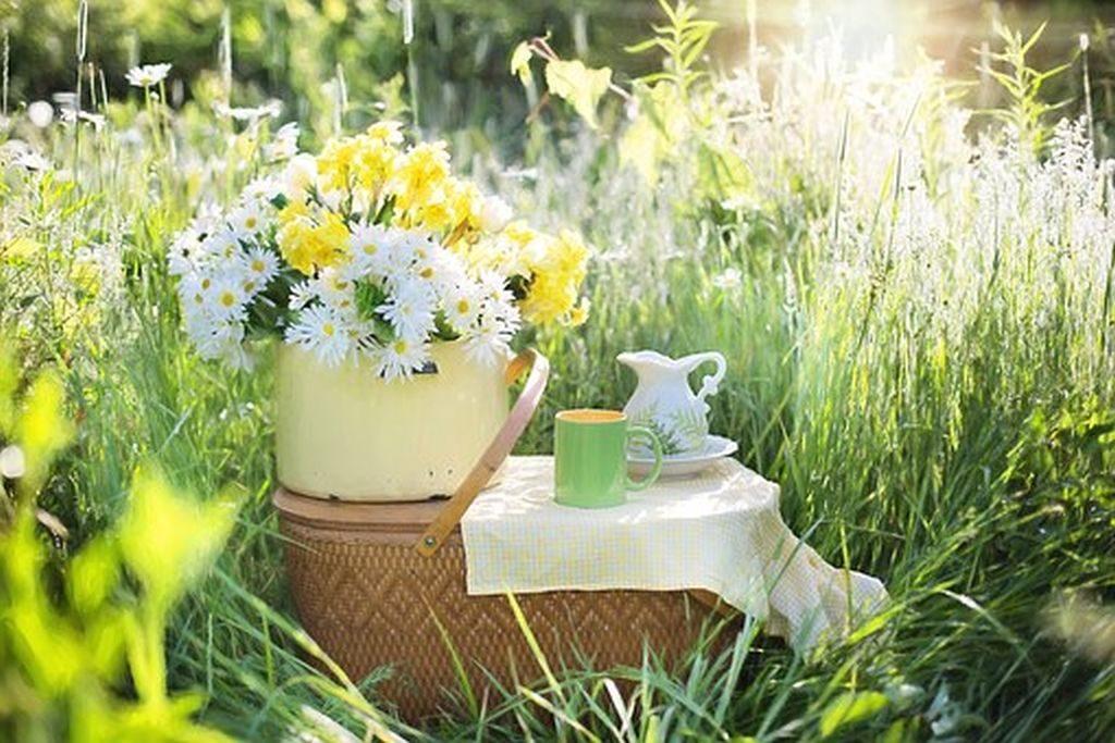 picnic, Pixabay