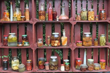 Fermented Foods Probiotics