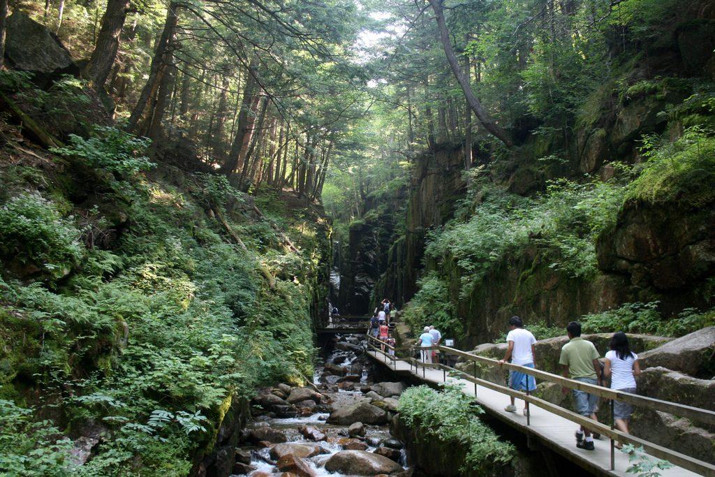 Freconia Notch State park