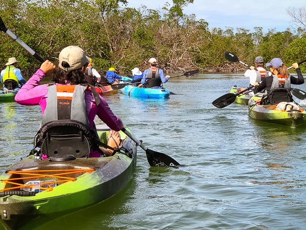 Florida Everglades kayak