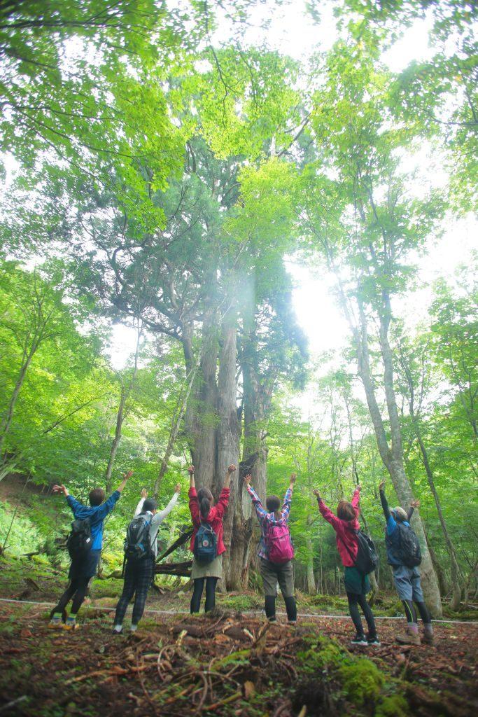 Setouchi -Forest bathing