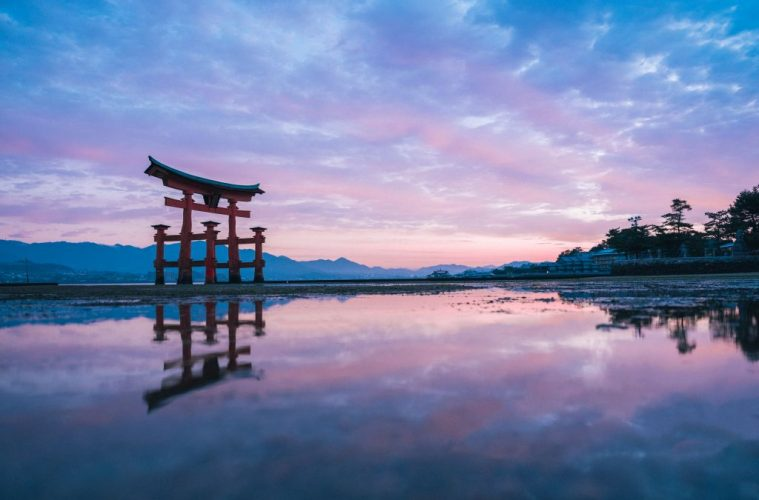 Top 7 Adventures for an Unforgettable Japan trip