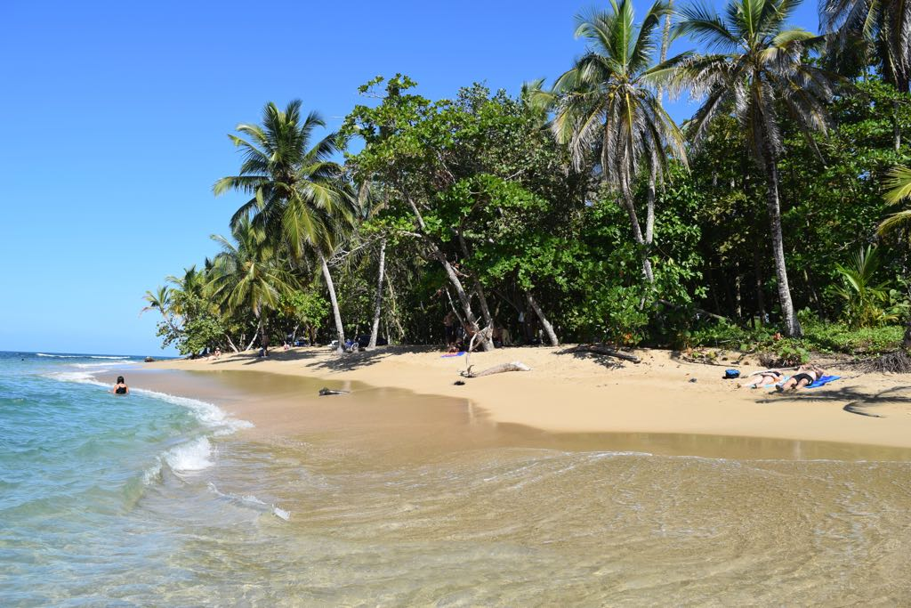 Playa Punta Uva, Costa
