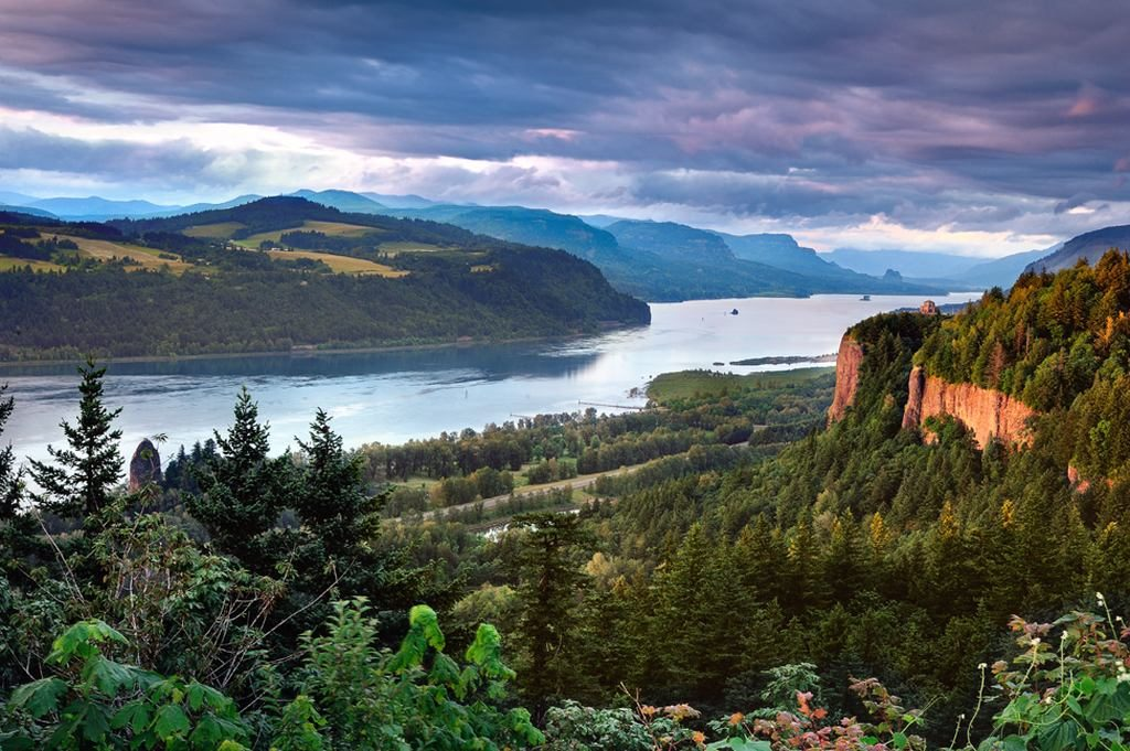 River Gorge, pinetrees, mountains, and a cloudy sky in Columbia River Gorge Scenic Area in the state of Oregon