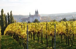 germany trip wine region Schloss_Proschwitz view to Albrechtsburg Castle in meissen Heidi Diehl - 1024 x 683