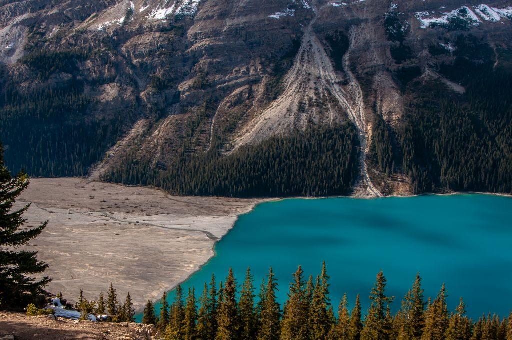 Peyto Creek Canada Rockies hiking