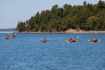 Coastal Kayaking Tours, Bar Harbor, ME. sea kayaking in maine