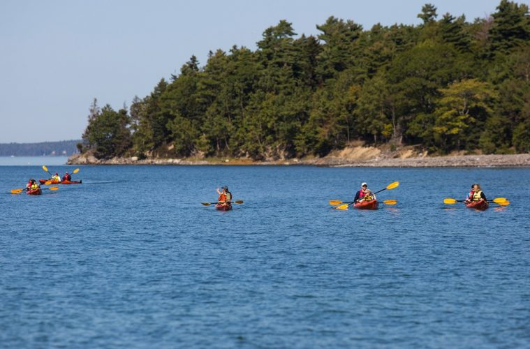 Kayaking on the Maine Coast: An adventure on the rocky headlands