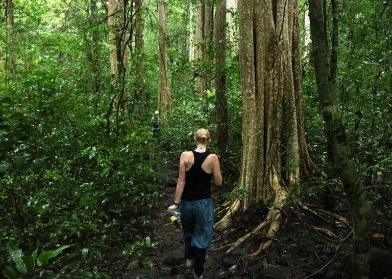 Vietnam Jungle Trekking