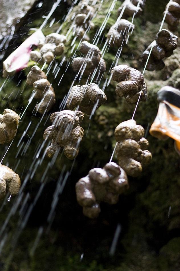 petrified teddybears Mother Shipton's Cave england uk