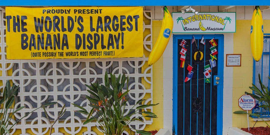 banana museum california