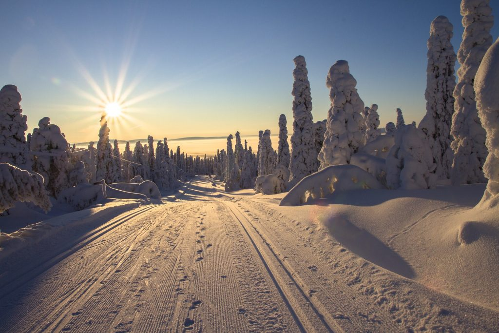 Snow in Lapland, Finland zodiac sign travel