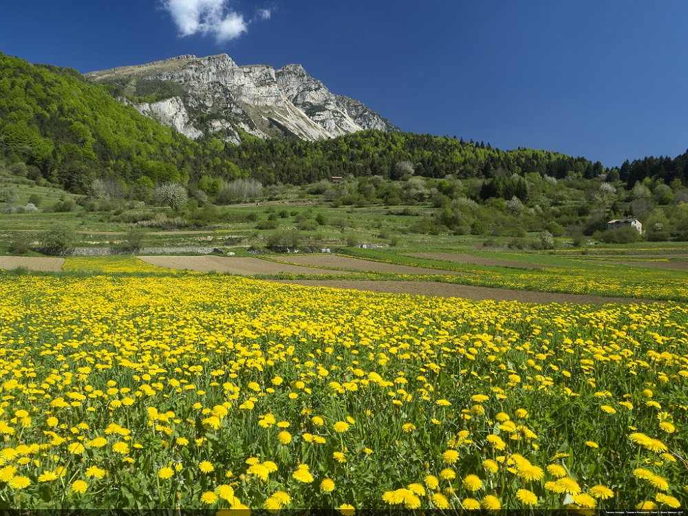 Vallagarina - Val di Gresta - Panorama with Mount Stivo in the background dolomites in spring
