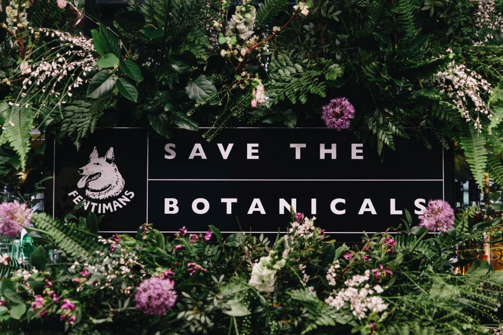 fenitmans save the botanicals northumberland england 1 - 1024 x 683
