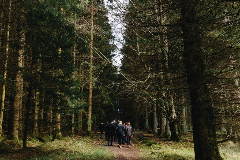 foraging fenitmans northumberland trip england 3 - 1024 x 683