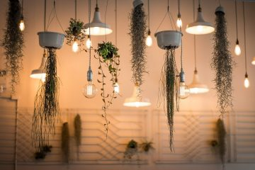 house plants lights indoor planters how to transform your home into a wellness haven