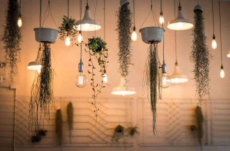 house plants lights indoor planters