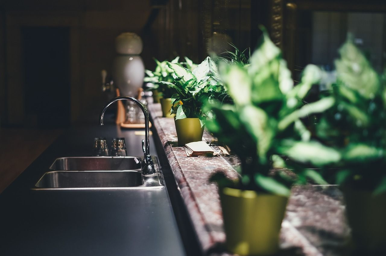 Herb planters growing by kitchen sink