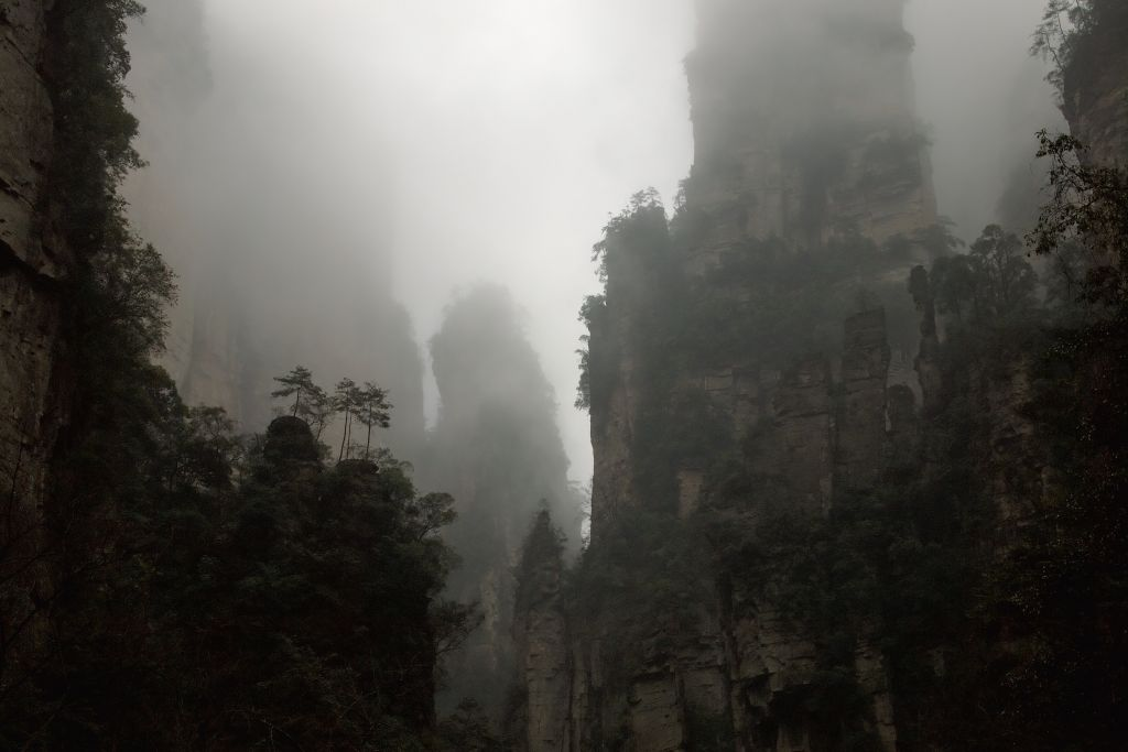 damp misty lime stone gorge surrounded by pillars with some fern like greenery jaw dropping rock climbs around the world. jaw dropping climbing location