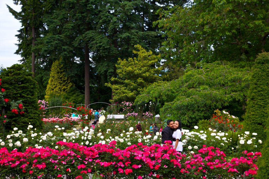 International Rose Test Garden – Portland, Oregon