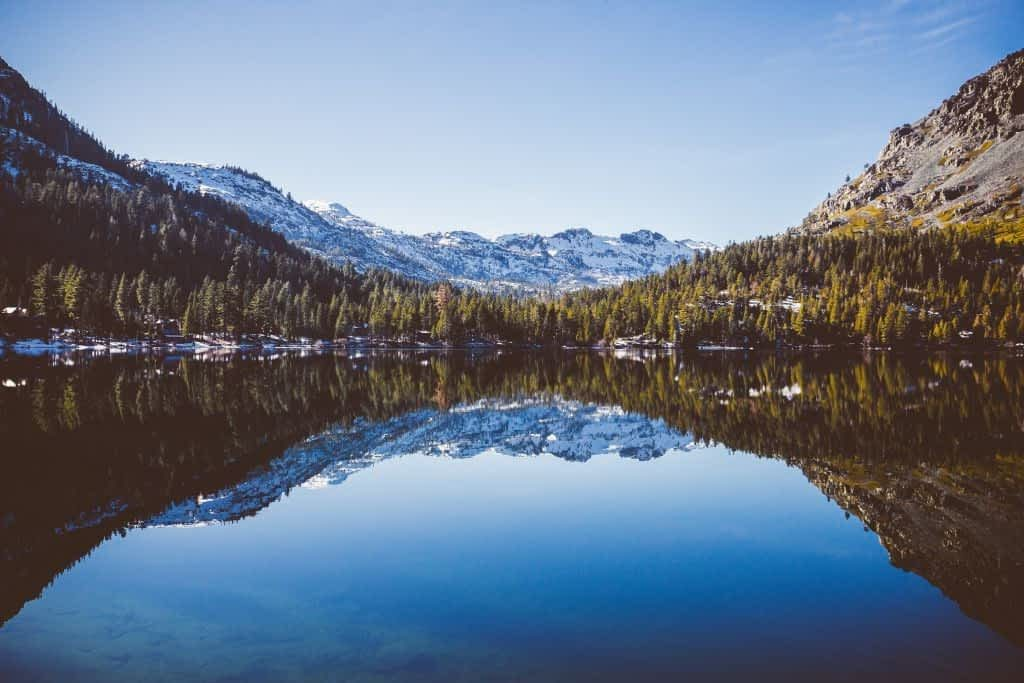 reflective water surrounded by trees and mountains