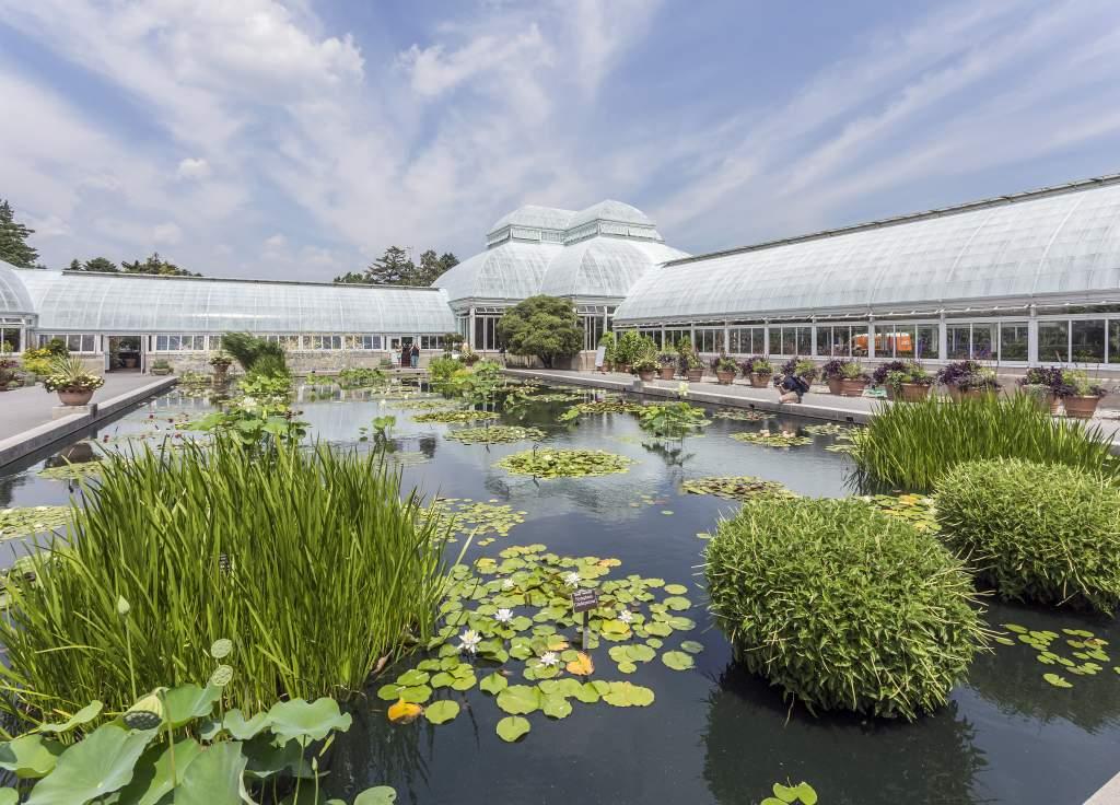 New York Botanical Gardens, New York, New York, USA