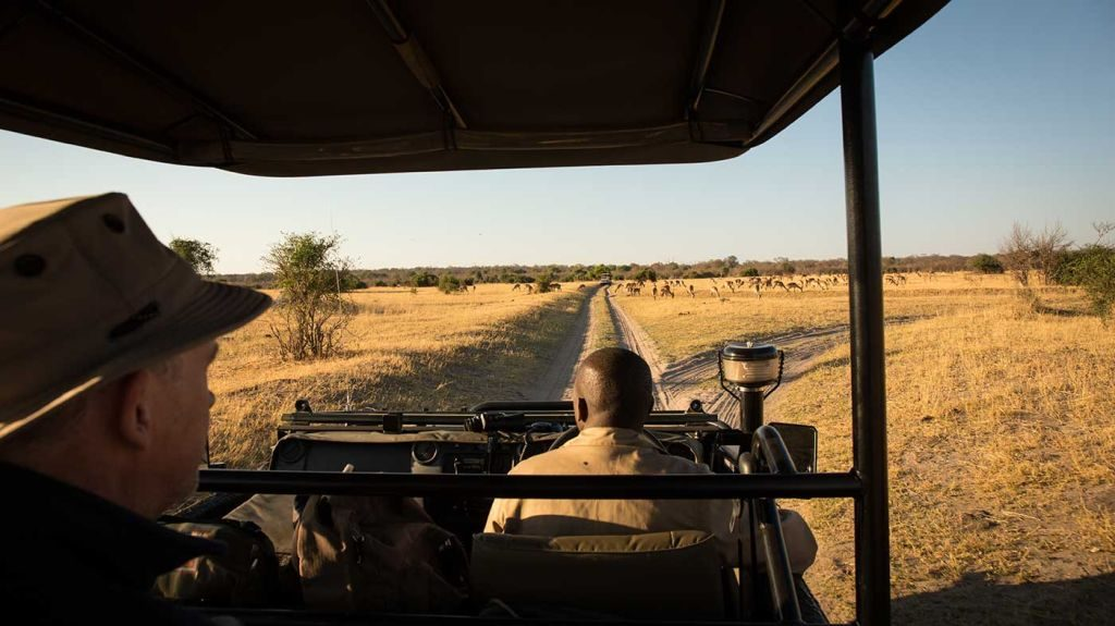 Safari Ride in South Africa