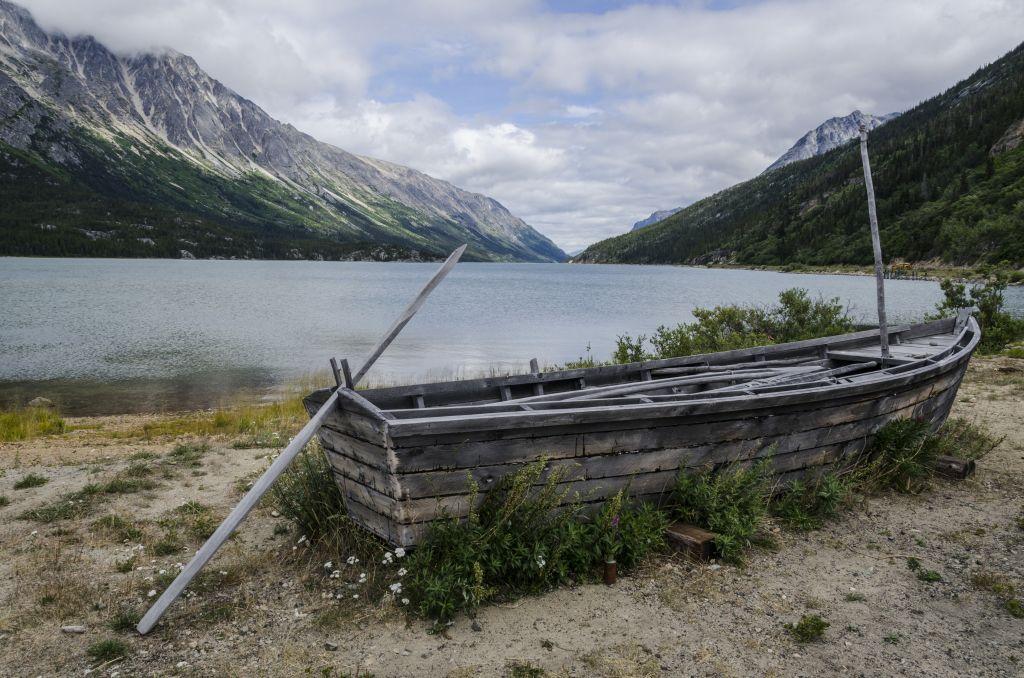 Coastal Alaska to Lake Bennett: Hiking in Yukon - Ecophiles