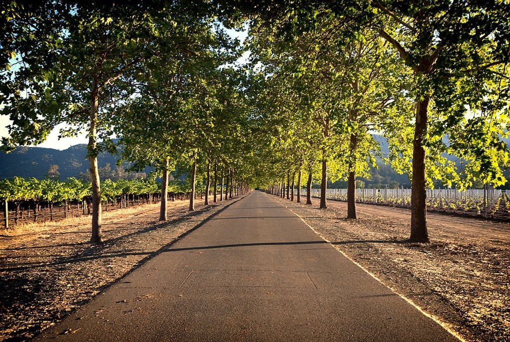 Napa Valley, California fall getaways in America