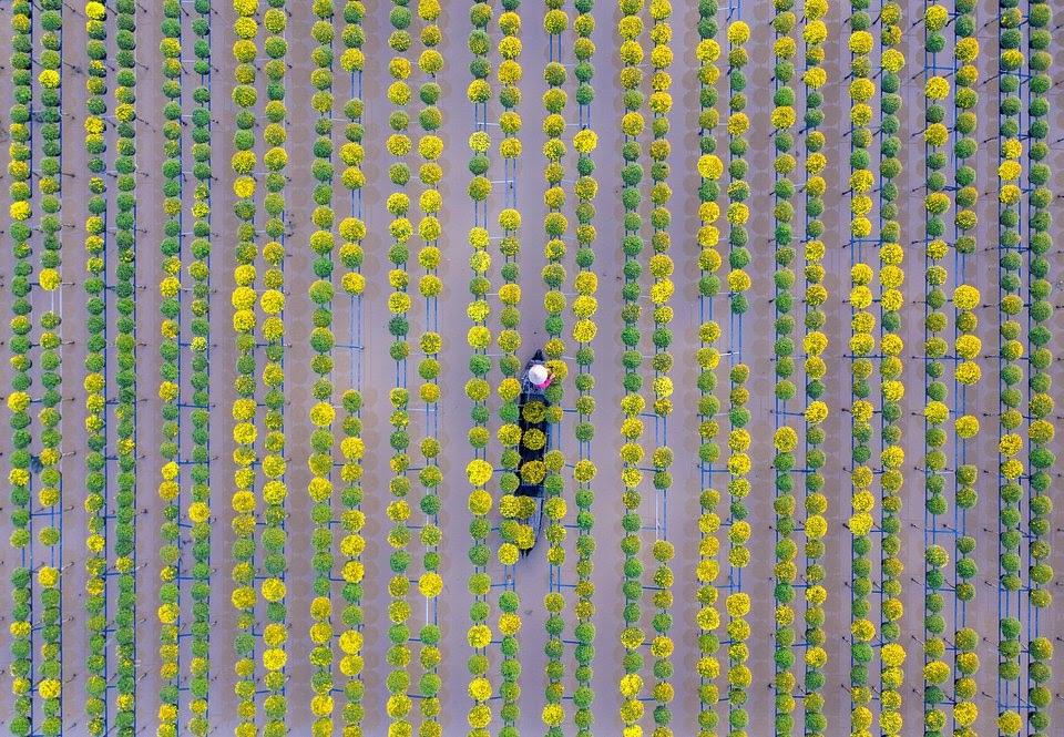 farmers vietnam