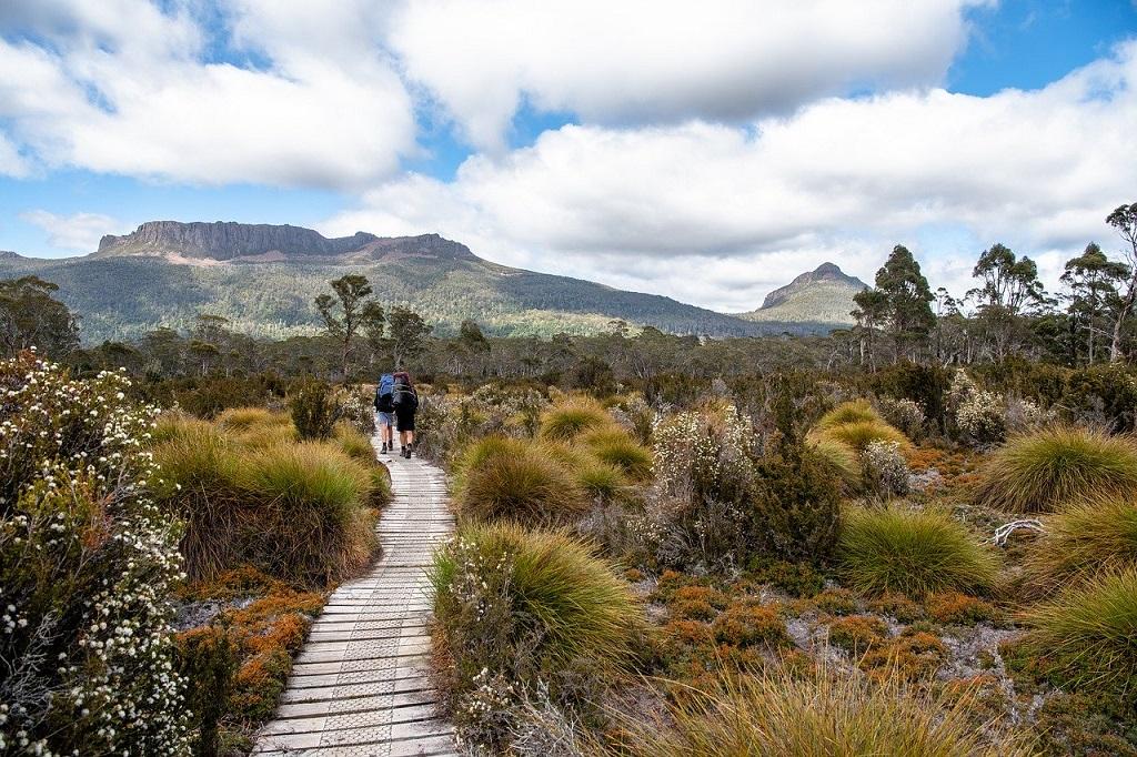 overland track tasmania australia